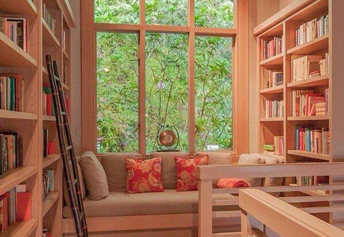 home-libraries-and-reading-nooks-s-391a671941e9a1ce